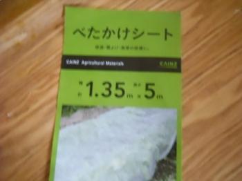 DSCN4662 (480x360).jpg